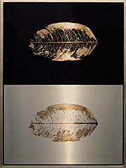 Suspended Leaf Diptych, 2010–15